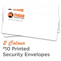 2 Colour #10 Printed Regular Security Envelope