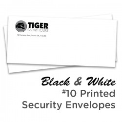 B&W #10 Printed Regular Security Envelope