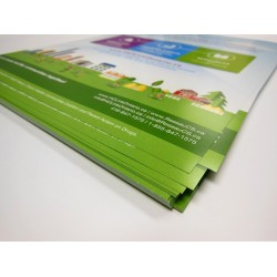 3.5 x 8.5 Single Sided Full Colour Flyers