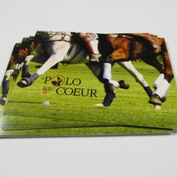 4.25 x 6 Single Sided Full Colour Postcards