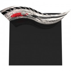 Economy 10FT Serpentine Curved Fabric Trade Show Display